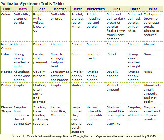 Pollinator Syndromes Traits Table